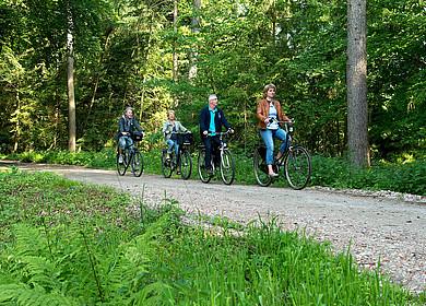 Fahrradgruppe auf einem Waldweg im Ammerland