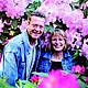 Die Tour 9 führt Sie zu den drei großen Rhododendronparks des Ammerlandes. Unter anderem in den Rhodopark Gristede.
